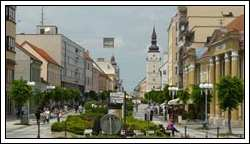 "Trnava ist ""European City of the Trees 2017"""